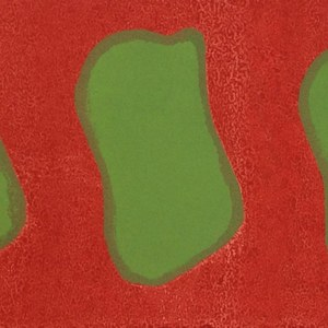 Claude Viallat. Monoprints